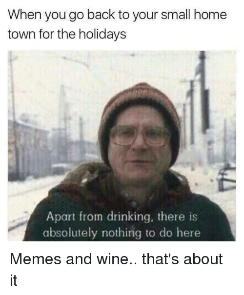 Dank, Drinking, and Memes: When you go back to your small home  town for the holidays  Apart from drinking, there is  absolutely nothing to do here Memes and wine.. that's about it