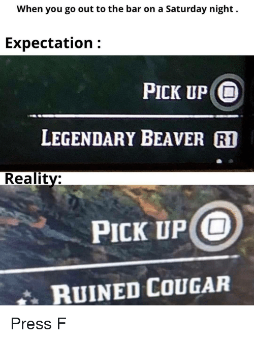Reality, Cougar, and Beaver: When you go out to the bar on a Saturday night.  Expectation:  PICK UP O  LEGENDARY BEAVER R1  Reality:  PICK UP O  RUINED COUGAR Press F