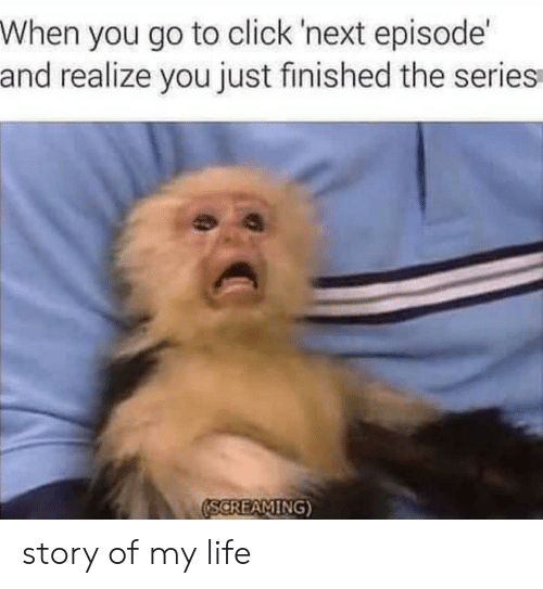 Click, Life, and Next: When you go to click 'next episode  and realize you just finished the series  SCREAMING story of my life