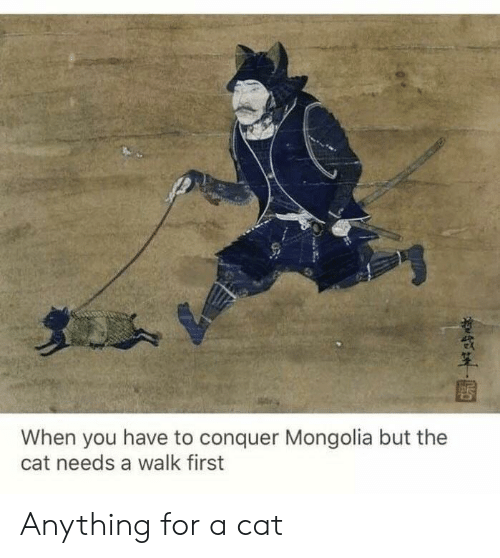 Mongolia, Cat, and First: When you have to conquer Mongolia but the  cat needs a walk first Anything for a cat