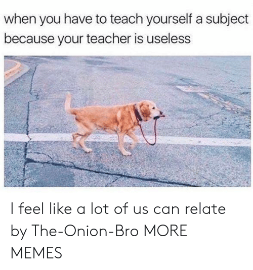 Dank, Memes, and Target: when you have to teach yourself a subject  because your teacher is useless I feel like a lot of us can relate by The-Onion-Bro MORE MEMES