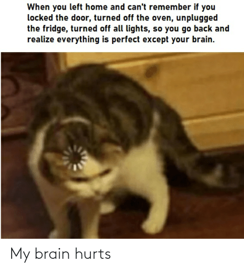 Reddit, Brain, and Home: When you left home and can't remember if you  locked the door, turned off the oven, unplugged  the fridge, turned off all lights, so you go back and  realize everything is perfect except your brain. My brain hurts