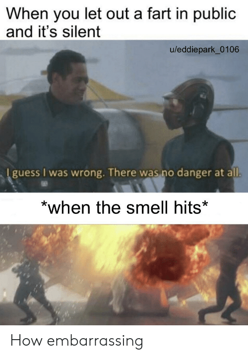 Smell: When you let out a fart in public  and it's silent  u/eddiepark_0106  I guess I was wrong. There was no danger at all.  *when the smell hits* How embarrassing