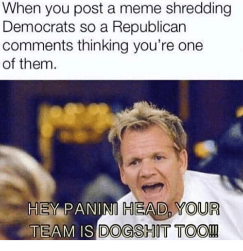 Head, Meme, and Republican: When you post a meme shredding  Democrats so a Republican  comments thinking you're one  of them  HEY PANINI HEAD, YOUR  TEAM IS DOGSHIT TOO