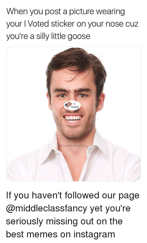 i voted: When you post a picture wearing  your I Voted sticker on your nose cuz  you're a silly little goose  Voted  @middleclassfancy If you haven't followed our page @middleclassfancy yet you're seriously missing out on the best memes on instagram