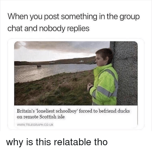 Telegraph: When you post something in the group  chat and nobody replies  Britain's loneliest schoolboy' forced to befriend ducks  on remote Scottish isle  WWW.TELEGRAPH CO UK why is this relatable tho