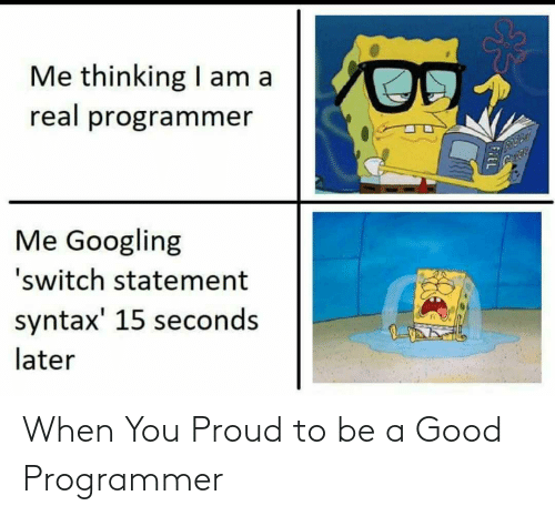 when you: When You Proud to be a Good Programmer