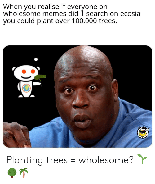 Memes, Search, and Trees: When you realise if everyone on  wholesome memes did 1 search on ecosia  you could plant over 100,000 trees. Planting trees = wholesome? 🌱🌳🌴