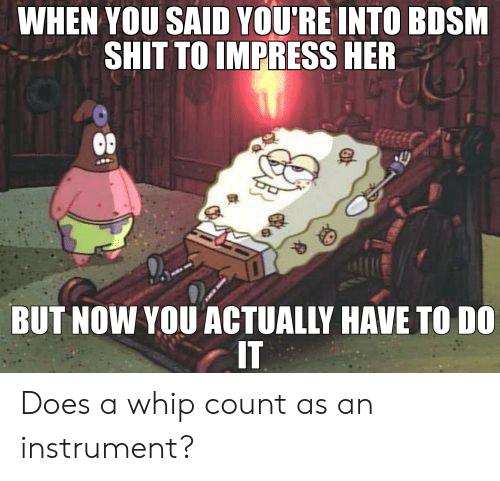 Shit, SpongeBob, and Whip: WHEN YOU SAID YOU'RE INTO BDSM  SHIT TO IMPRESS HER  BUT NOW YOU ACTUALLY HAVE TO DO  IT Does a whip count as an instrument?