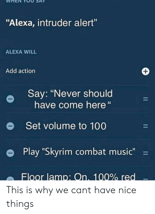 """Anaconda, Music, and Skyrim: WHEN YOU SAY  """"Alexa, intruder alert""""  15  ALEXA WILL  Add action  Say: """"Never should  have come here""""  e  Set volume to 100  e Play """"Skyrim combat music-  Floor lamp: On. 100% red This is why we cant have nice things"""