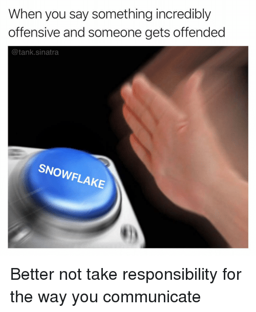 Funny, Responsibility, and Tank: When you say something incredibly  offensive and someone gets offended  @tank.sinatra  SNOWFLAKE Better not take responsibility for the way you communicate