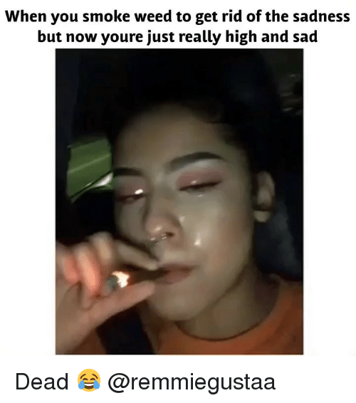 Really High: When you smoke weed to get rid of the sadness  but now youre just really high and sad Dead 😂 @remmiegustaa