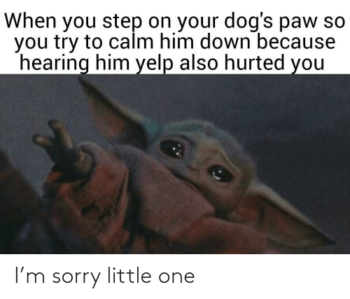 Little One: When you step on your dog's paw so  you try to calm him down because  hearing him yelp also hurted you I'm sorry little one