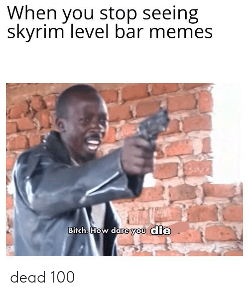 Bitch, Memes, and Skyrim: When you stop seeing  skyrim level bar memes  Bitch. How dare you die dead 100