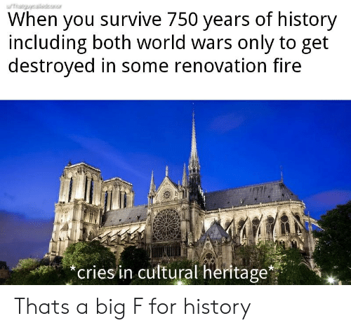 Cultural: When you survive 750 years of history  including both world wars only to get  destroyed in some renovation fire  eriesin cultural heritage* Thats a big F for history