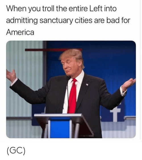 America, Bad, and Memes: When you troll the entire Left into  admitting sanctuary cities are bad for  America (GC)