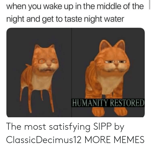 Humanity Restored: when you wake up in the middle of the  night and get to taste night water  HUMANITY RESTORED The most satisfying SIPP by ClassicDecimus12 MORE MEMES