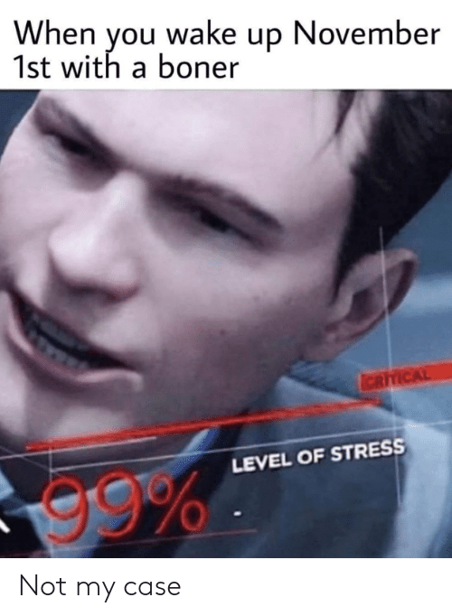 Reddit, Stress, and Case: When you wake up November  1st with a boner  ICRITICAL  LEVEL OF STRESS Not my case