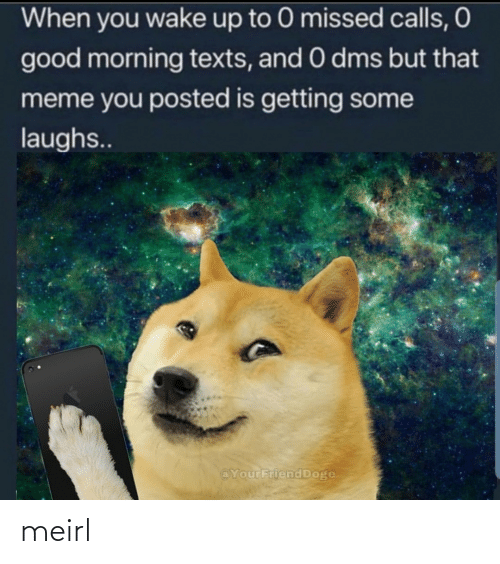 dms: When you wake up to 0 missed calls, O  good morning texts, and 0 dms but that  meme you posted is getting some  laughs..  @YourFriend Doge meirl