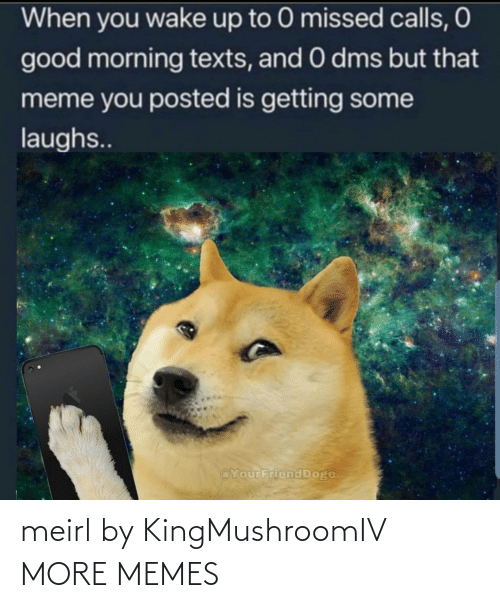 dms: When you wake up to 0 missed calls, O  good morning texts, and 0 dms but that  meme you posted is getting some  laughs..  @YourFriend Doge meirl by KingMushroomIV MORE MEMES