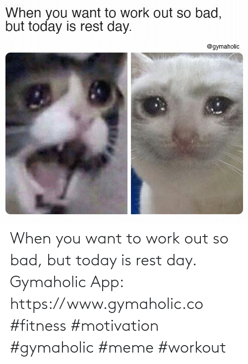 Work: When you want to work out so bad, but today is rest day.  Gymaholic App: https://www.gymaholic.co  #fitness #motivation #gymaholic #meme #workout