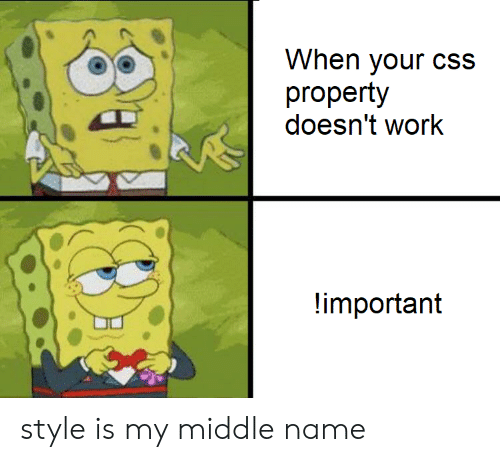 Work, Middle Name, and Css: When your cSs  property  doesn't work  important style is my middle name