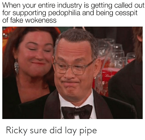 When Your: When your entire industry is getting called out  for supporting pedophilia and being cesspit  of fake wokeness Ricky sure did lay pipe
