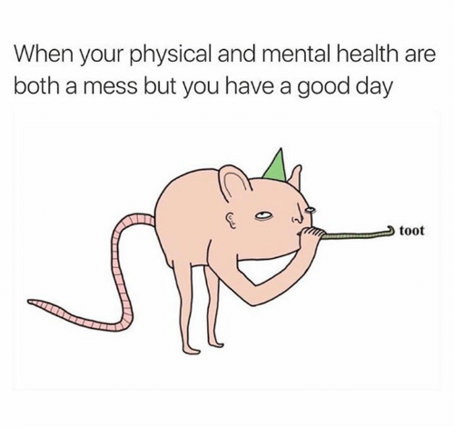 Toots: When your physical and mental health are  both a mess but you have a good day  toot