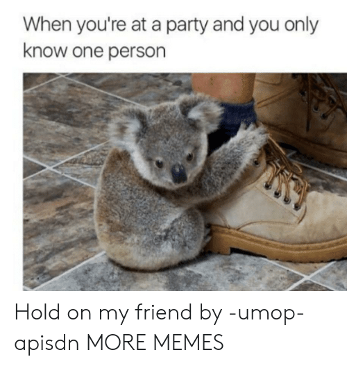 Dank, Memes, and Party: When you're at a party and you only  know one person Hold on my friend by -umop-apisdn MORE MEMES