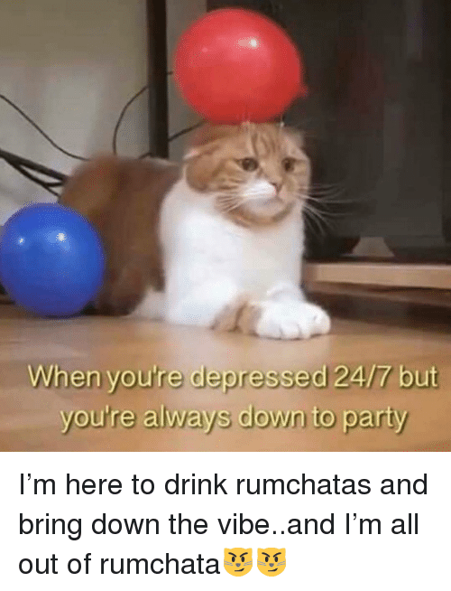 The Vibe: When you're depressed 24/7 but  you're always down to party I'm here to drink rumchatas and bring down the vibe..and I'm all out of rumchata😼😼