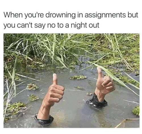 You, Drowning, and Youre: When you're drowning in assignments but  you can't say no to a night out