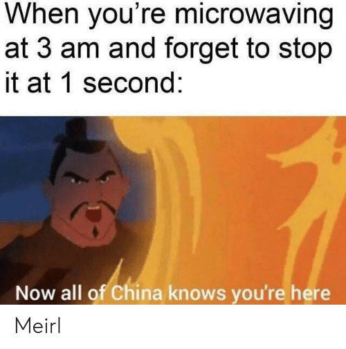 China: When you're microwaving  at 3 am and forget to stop  it at 1 second:  Now all of China knows you're here Meirl
