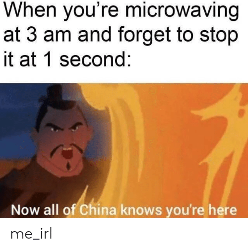 China: When you're microwaving  at 3 am and forget to stop  it at 1 second:  Now all of China knows you're here me_irl