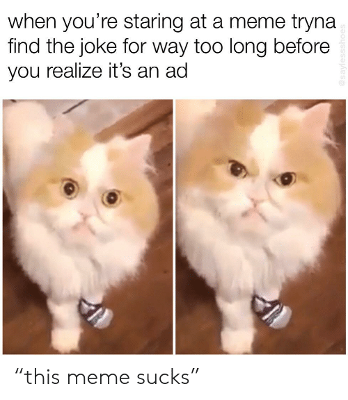 """Meme, You, and For: when you're staring at a meme tryna  find the joke for way too long before  you realize it's an ad """"this meme sucks"""""""