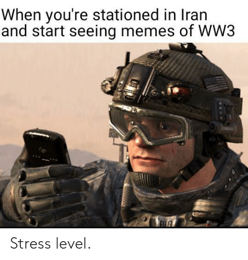 level: When you're stationed in Iran  and start seeing memes of WW3  1306 Stress level.