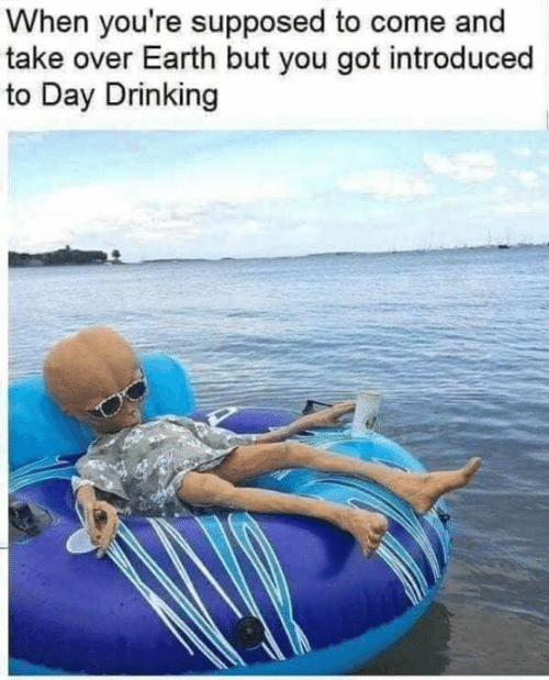 Dank, Drinking, and Earth: When you're supposed to come and  take over Earth but you got introduced  to Day Drinking