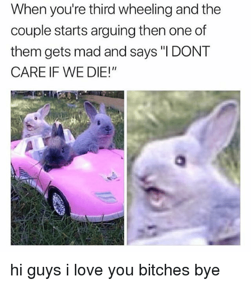 """Wheeling: When you're third wheeling and the  couple starts arguing then one of  them gets mad and says """"I DONT  CARE IF WE DIE!"""" hi guys i love you bitches bye"""