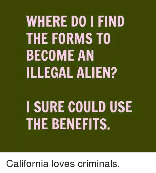 Illegal Alien: WHERE DO I FIND  THE FORMS TO  BECOME AN  ILLEGAL ALIEN?  I SURE COULD USIE  THE BENEFITS. California loves criminals.