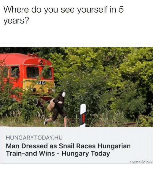 Hungarian: Where do you see yourself in 5  years?  HUNGARYTODAY HU  Man Dressed as Snail Races Hungarian  Train-and Wins Hungary Today