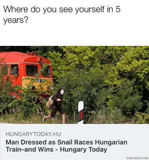 Hungarian: Where do you see yourself in 5  years?  HUNGARYTODAY.HU  Man Dressed as Snail Races Hungarian  Train-and Wins - Hungary Today  LAmematic.net