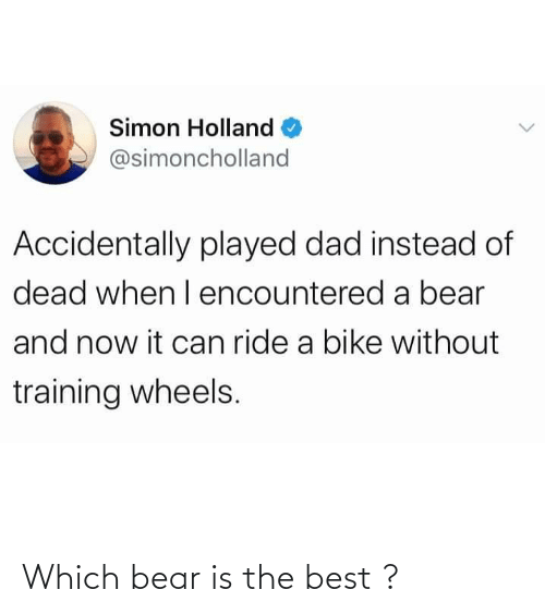 Which: Which bear is the best ?