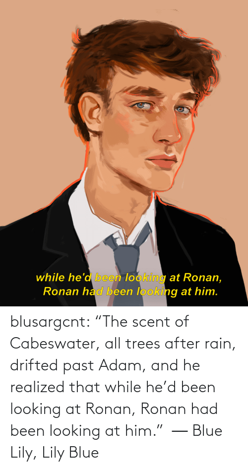 """Trees: while he'd been looking at Ronan,  Ronan had been looking at him. blusargcnt:  """"The scent of Cabeswater, all trees after rain, drifted past Adam, and he realized that while he'd been looking at Ronan, Ronan had been looking at him."""" ― Blue Lily, Lily Blue"""