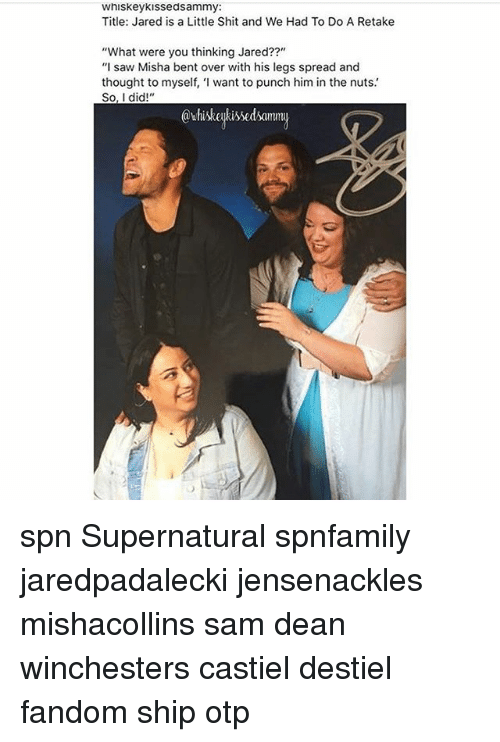 "Spreaded: Whiskey Kissedsammy:  Title: Jared is a Little Shit and We Had To Do A Retake  ""What were you thinking Jared??""  ""I saw Misha bent over with his legs spread and  thought to myself, 'I want to punch him in the nuts.  So, I did!""  @whiskeykissedsamm spn Supernatural spnfamily jaredpadalecki jensenackles mishacollins sam dean winchesters castiel destiel fandom ship otp"