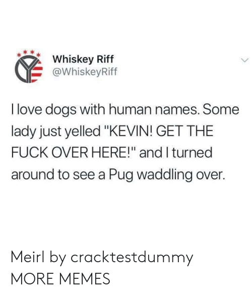"Dank, Dogs, and Love: Whiskey Riff  @WhiskeyRiff  I love dogs with human names. Some  lady just yelled ""KEVIN! GET THE  FUCK OVER HERE!"" and I turned  around to see a Pug waddling over. Meirl by cracktestdummy MORE MEMES"