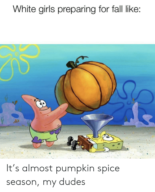 My Dudes: White girls preparing for fall like: It's almost pumpkin spice season, my dudes
