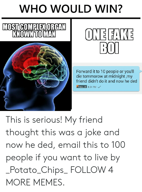 100 People: WHO WOULD WIN?  MOST COMPLEX ORGAN  KNOWN TO MAN  ONE FAKE  ВOО  Forward it to 10 people or youll  die tommorow at midnight my  friend didn't do it and now he ded  Voda.. N 8.31 PM This is serious! My friend thought this was a joke and now he ded, email this to 100 people if you want to live by _Potato_Chips_ FOLLOW 4 MORE MEMES.