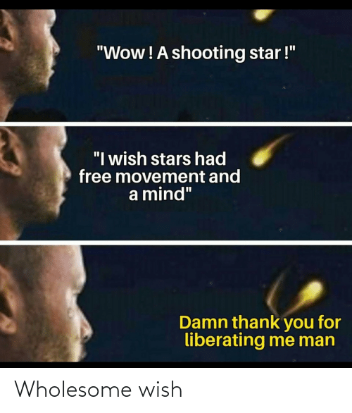 Wholesome: Wholesome wish