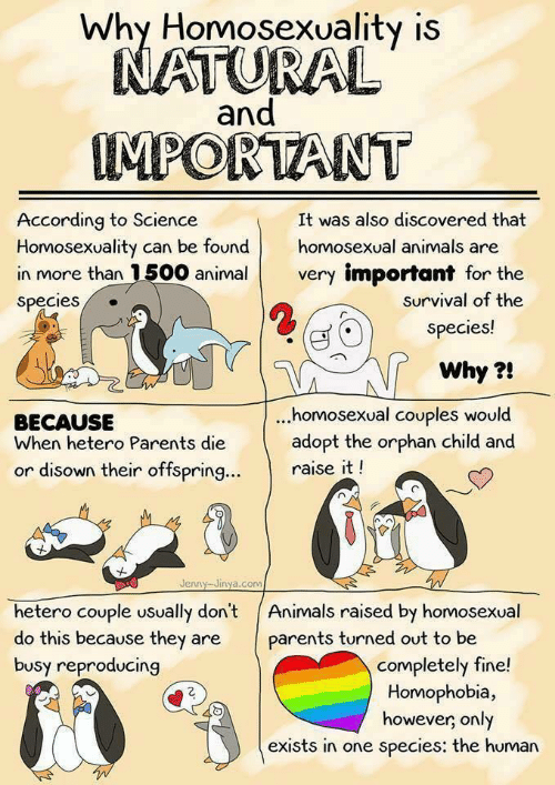 Animals, Parents, and Animal: Why Homosexuality is  and  IMPORTANT  According to Science  Homosexuality can be foundhomosexual animals are  in more than 1500 animal very important for the  Species  It was also discovered that  survival of the  species!  Why?!  ..homosexual couples would  BECAUSE  When hetero Parents die adopt the orphan child and  or disown their offspring  raise it!  Jenny Jinya.corm  hetero couple usually don't Animals raised by homosexual  do this because they are parents turned out to be  busy reproducing  completely fine!  Homophobia,  however, only  exists in one species: the human