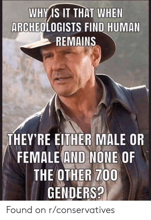 Human, Why, and Female: WHY IS IT THAT WHEN  ARCHEOLOGISTS FIND HUMAN  REMAINS  THEY'RE EITHER MALE OR  FEMALE AND NONE OF  THE OTHER 700  GENDERS? Found on r/conservatives