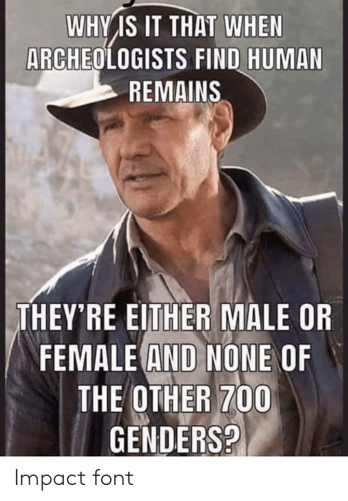 Human, Why, and Impact: WHY IS IT THAT WHEN  ARCHEOLOGISTS FIND HUMAN  REMAINS  THEY'RE EITHER MALE OR  FEMALE AND NONE OF  THE OTHER 700  GENDERS? Impact font